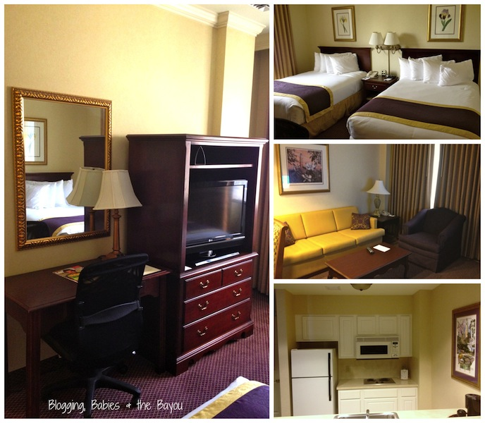 LSU The Cook Hotel Baton Rouge La. Collage .jpg
