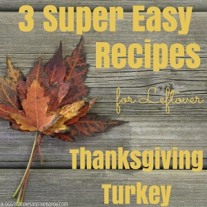 Holiday Meal Solution - 3 Super Easy Recipes for Leftover Thanksgiving Turkey Dinner