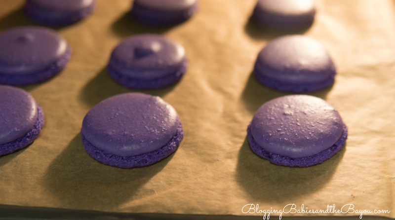 Step by Step process on how to make Mardi Gras Macarons