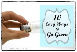"10 Eco and Budget Friendly Easy Ways to ""Go Green"""