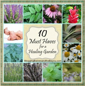 10 Must Haves for a Healing Garden
