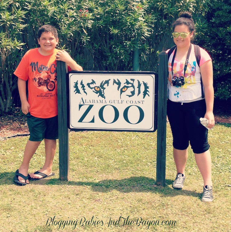 Alabama Gulf Coast Zoo #BayouTravel