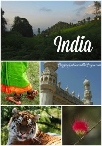 Planning a visit to India? Info about India in our Bayou Travel Bucket series – India #BayouTravel