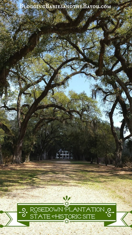 Rosedown Plantation State Historic Site St. Francisville, Louisiana  #BayouTravel