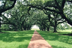 Oak Alley Plantation Tour Vacherie, Louisiana #BayouTravel