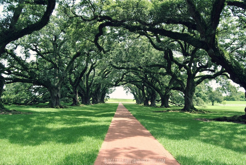 Oak Alley Plantation - Louisiana & American History Tour in the New Orleans Area #BayouTravel