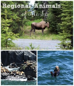 Regional Animals of Alaska #BayouTravel