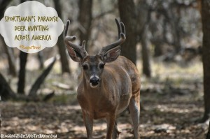 Sportsmans Paradise – Deer Hunting across America #BayouTravel
