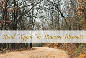Family Travel Destination- Branson Missouri #ExploreBranson #BayouTravel