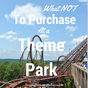 Summer Travel Tips: What Not to Purchase at a Theme Park #BayouTravel