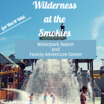 Wilderness at the Smokies Waterpark Resort and Family Adventure Center #BayouTravel