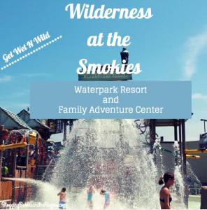 Wilderness at tthe Smokies Waterpark and Family Adventure Center #Bayoutravel