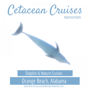 Cetacean Cruises Dolphin & Nature Cruise Orange Beach, Alabama #BayouTravel
