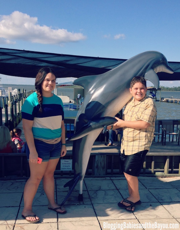 Dolphin & Nature Cruises - Cetacean Cruises - Alabama Gulf Coast & Orange Beach #BayouTravel