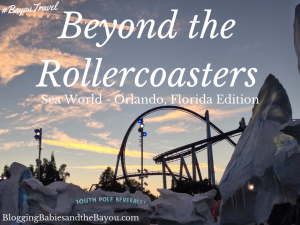 Beyond the Rollercoasters Sea World - Orlando Florida Edition #BayouTravel