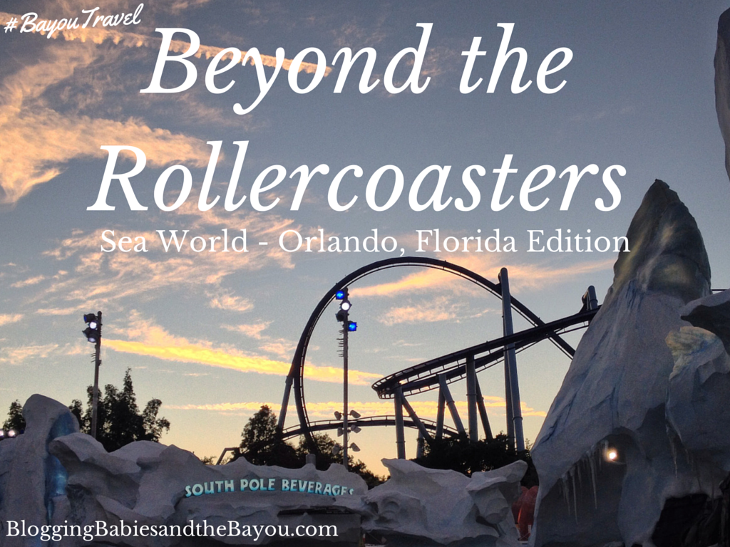 Beyond the Rollercoasters Sea World - Orlando Florida Edition #BayouTravel