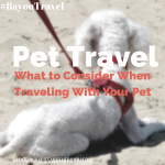 Pet Travel: What to Consider when Traveling with Your Pet  #BayouTravel