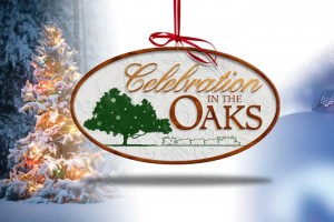 Celebration in the Oaks – City Park New Orleans #MerryMakers #IheartCityPark #CITO2014 #Ad