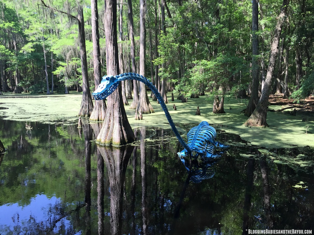 What to do in Tallahassee?   Attractions and Museums in Tallahassee - Tallahassee Museum