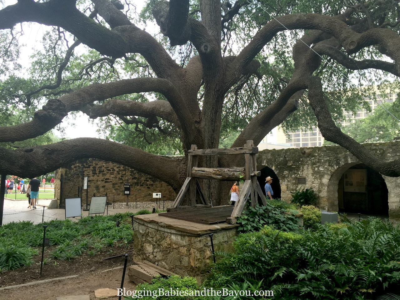San Antonio Must See Educational Family Attractions - The Alamo #BayouTravel