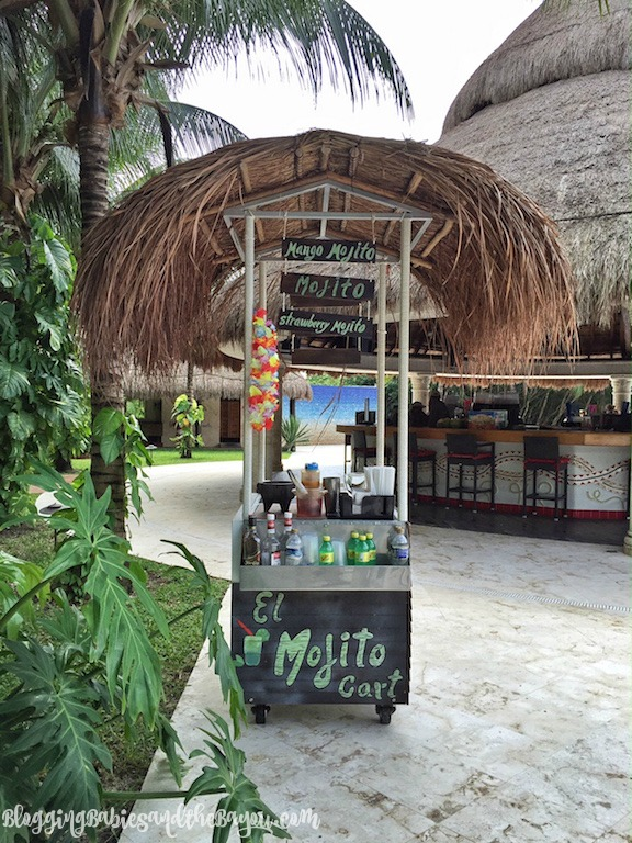 Food, Drinks, Beach Activities in Cozumel Mexico - Paradise Beach  plus Free Wifi