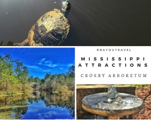Crosby Arboretum – Outdoor Family Attractions in Picayune Mississippi #BayouTravel