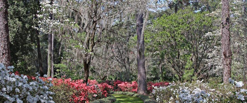 Alfred B. Maclay Gardens State Park- Visit Your Local State Parks – State by State, Florida State Parks {Spotlight} #BayouTravel