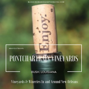 Vineyards & Wineries In and Around New Orleans – Pontchartrain Vineyards #BayouTravel