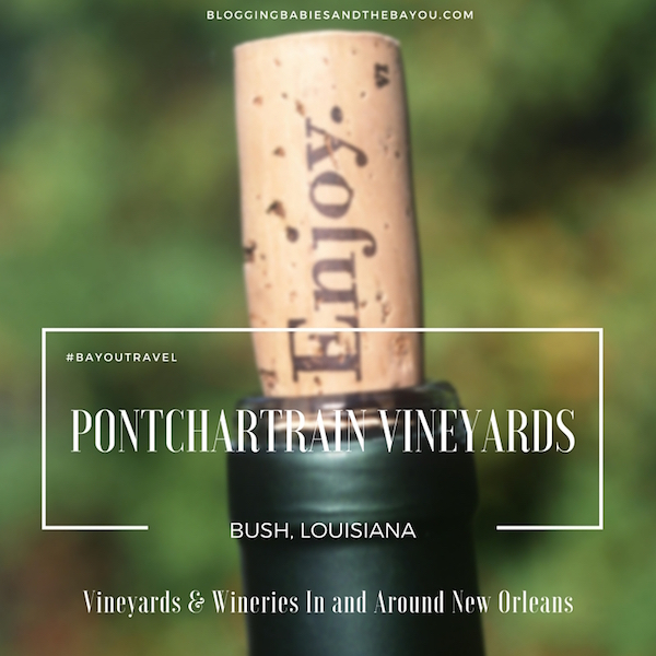 Vineyards & Wineries In and Around New Orleans - Pontchartrain Vineyards #BayouTravel