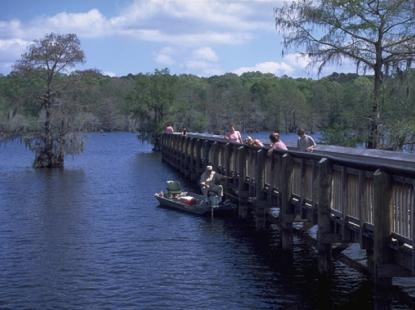 Chicot State Park - A Walk In the Park, State Park Spotlight - Louisiana State Park Spotlight