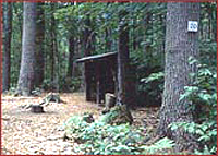 Swans Falls Campground Maine - State by State, A Walk in the Park - State Parks of Maine #BayouTravel